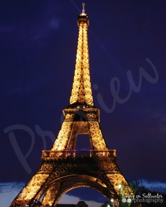Living on Saltwater Photography - Eiffel Tower