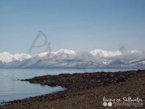 Living on Saltwater Photography -- Alaska Shore
